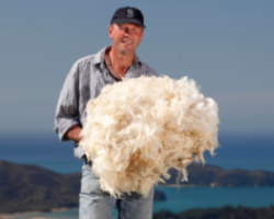 Wools of New Zealand - Huddersfield Textile Society October lecture
